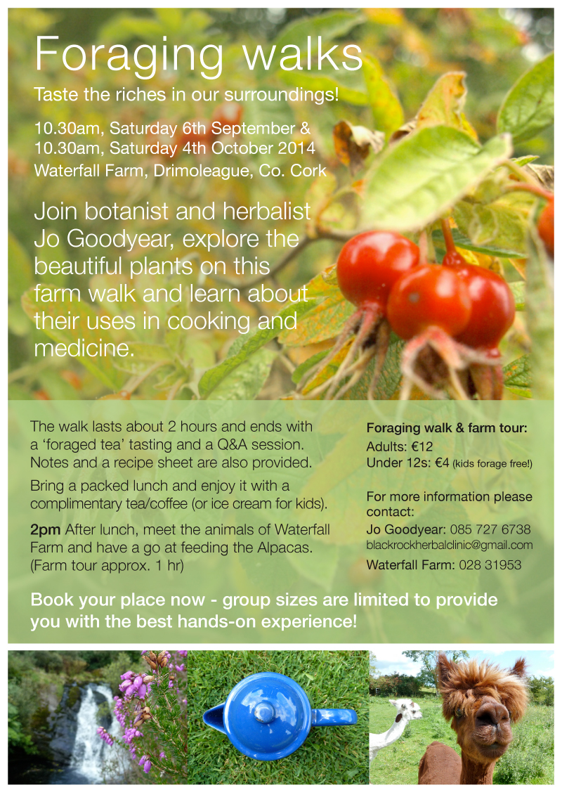 jo-foraging-poster-SO